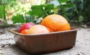 L'emballage est conçu à partir de déchets des industries alimentaires.