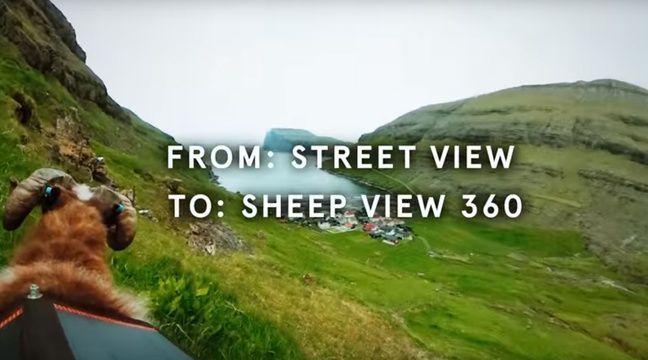 video les iles f ro quipent des moutons pour cr er des google street view. Black Bedroom Furniture Sets. Home Design Ideas