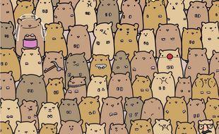Il faut être attentif pour retrouver la pomme de terre cachée parmi les hamsters.