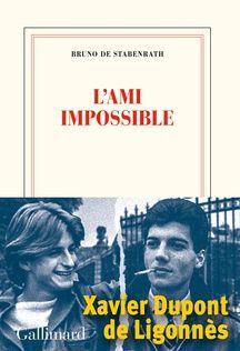L'Ami impossible, publié chez Gallimard