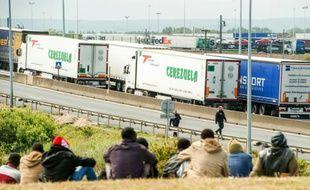 Des migrants attendent près de l'autoroute A6 à Calais espérant entrer dans le tunnel sous la Manche le 23 juin 2015
