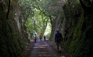 La forêt couvre 14% du territoire en Bretagne, un chiffre bien inférieur à la moyenne nationale.