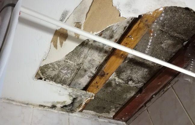 Le plafond de certains logements s'effondre