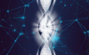 Illustration de l'ADN.