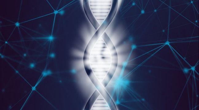 Biologie numérique : L'informatique va-t-elle réussir à éradiquer les maladies ? - 20minutes.fr