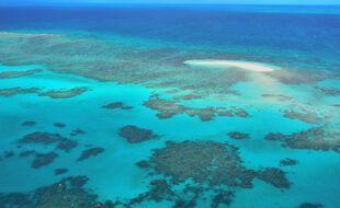 Vue aérienne de la grande barrière de corail australienne, près de Cairns, dans l'Etat du Queensland, au nord-est du pays.