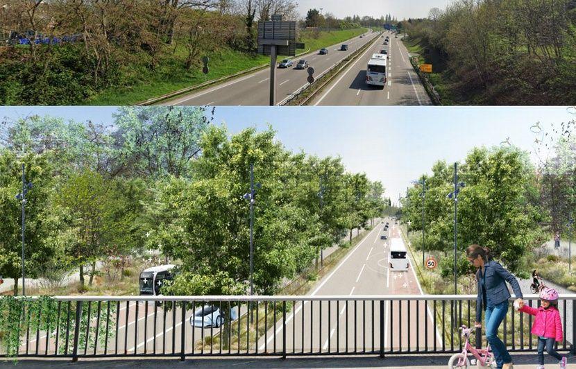 Strasbourg : L'A35 pourrait devenir une simple route limitée à 50 km/h dans un parc métropolitain