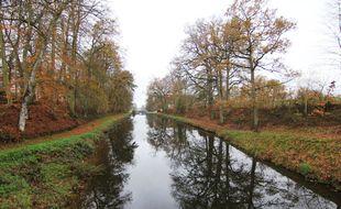 De nombreux arbres vont être plantés au bord du canal d'Ille et Rance. Comme ici, sur le site des 11 écluses à Hédé-Bazouges.
