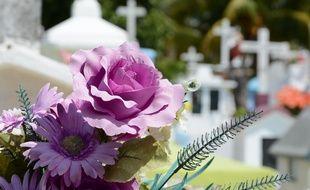 Les vols de fleurs se multipliaient depuis deux ans au cimetière de La Lucerne-d'Outremer (illustration).
