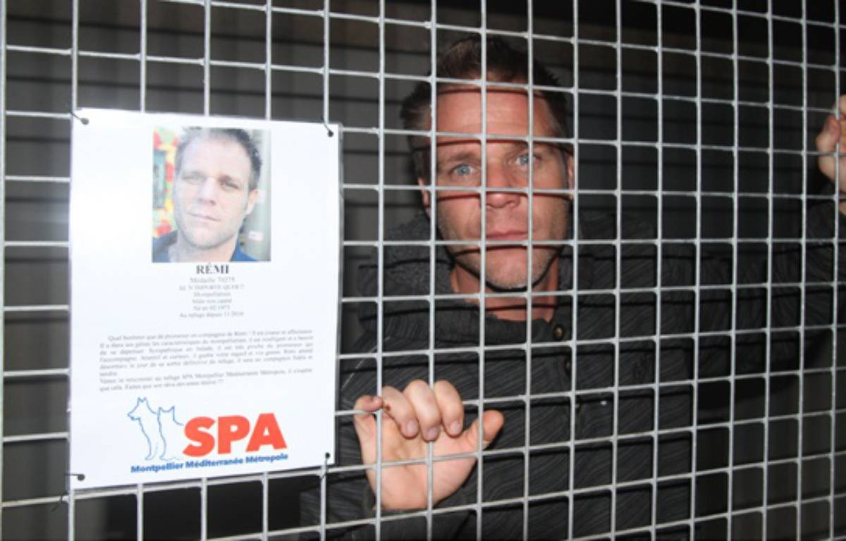 Rémi Gaillard est enfermé depuis vendredi dans une cage de la SPA. Depuis, les dons affluent et les adoptions n'ont jamais été aussi nombreuses. – Jérôme Diesnis  / Agence Maxele Presse
