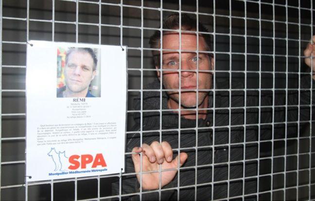 Rémi Gaillard est enfermé depuis vendredi dans une cage de la SPA. Depuis, les dons affluent et les adoptions n'ont jamais été aussi nombreuses.