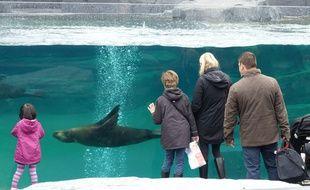 Des visiteurs au zoo de Vincennes, le 27 avril 2014