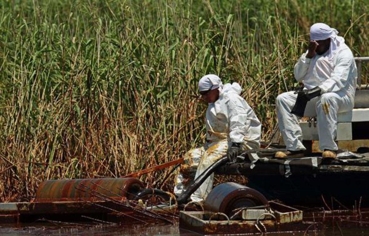 Des personnes s'affairent au nettoyage des côtes de Lousiane souillées par la marée noire, le 1erjuin 2010. – AFP