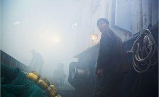 Sea fog, les cladestins
