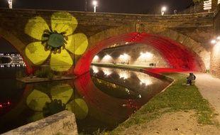 Une renoncule projetée sur le Pont-Neuf à Toulouse, le samedi 24 octobre, en hommage à Rémi Fraisse.
