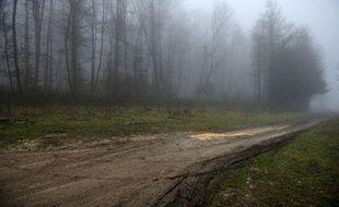 Le chemin forestier où a été retrouvé le corps carbonisé d'un adolescent de 14 ans, le 11 janvier 2012, dans les bois d'Etouvans dans le Doubs.