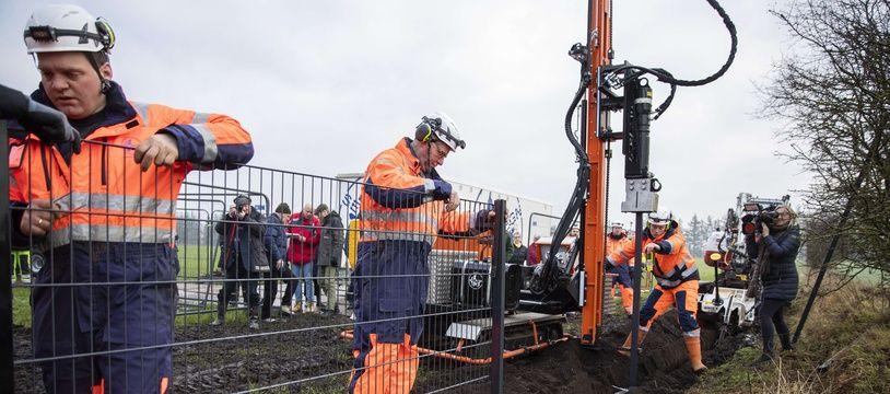 Le Danemark a commencé la construction d'une palissade le long de la frontière pour empêcher les sangliers porteurs de la peste porcine d'entrer sur le territoire.