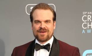 L'acteur David Harbour