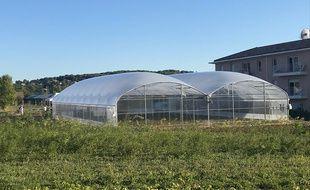 L'Aromatic FabLab dispose de 9 000 m2 de culture en pleine terre et sous serre.