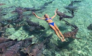 Katarina Zarutskie, une Américaine de 19 ans, a été mordue par un requin nourrice aux Bahamas.