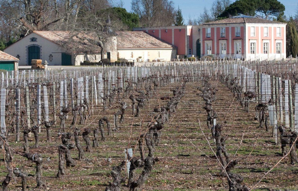 Un groupe agroalimentaire chinois a fait l'acquisition de Chateau de Viaud, situe dans la prestigieuse appellation Lalande-de-Pomerol, en 2011. – VALINCO/SIPA
