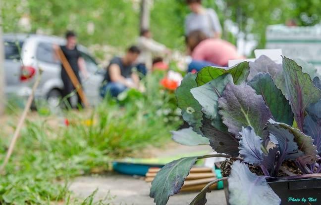 Paris qui sont les jardiniers amateurs autoris s for Jardin 54 rue de fecamp