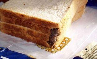 La souris retrouvée dans un pain de mie par un père de famille britannique, le 28 septembre 2010.