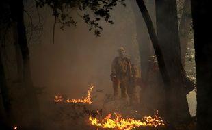 Les incendies qui ravagent la Californie du nord ont fait plus de 30 morts, ont annoncé les autorités jeudi 12 octobre.