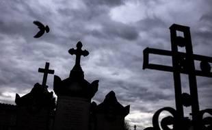 La ville de Lyon a été l'une des premières à bannir les produits phytosanitaires pour faire revenir la biodiversité dans ses cimetières.