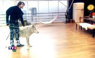 Le danseur Anthony Colette avec le loup Mako.