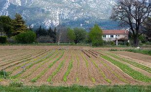 Aubagne le 9 avril 2012 - Illustration sur l'agriculture , la secheresse et l'irrigation