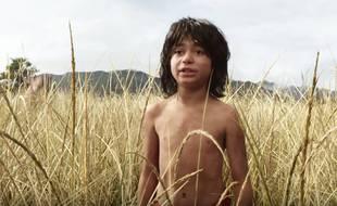 Image extraite du trail du «Livre de la jungle» réalisé par Jon Favreau. Neel Sethi incarne Mowgli.
