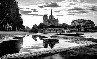 Le reflet de Notre-Dame de Paris sur l'île de la Cité.