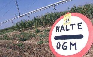 Des membres du collectif des Faucheurs volontaires ont détruit une parcelle OGM (photo d'illustration).