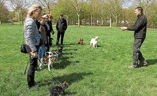 Jérôme Mascarin organise des leçons pour les chiens et leurs maîtres au bois de Vincennes le samedi matin.