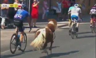 Le poney s'est lancé au grand galop avec les cyclistes du Tour de Pologne.