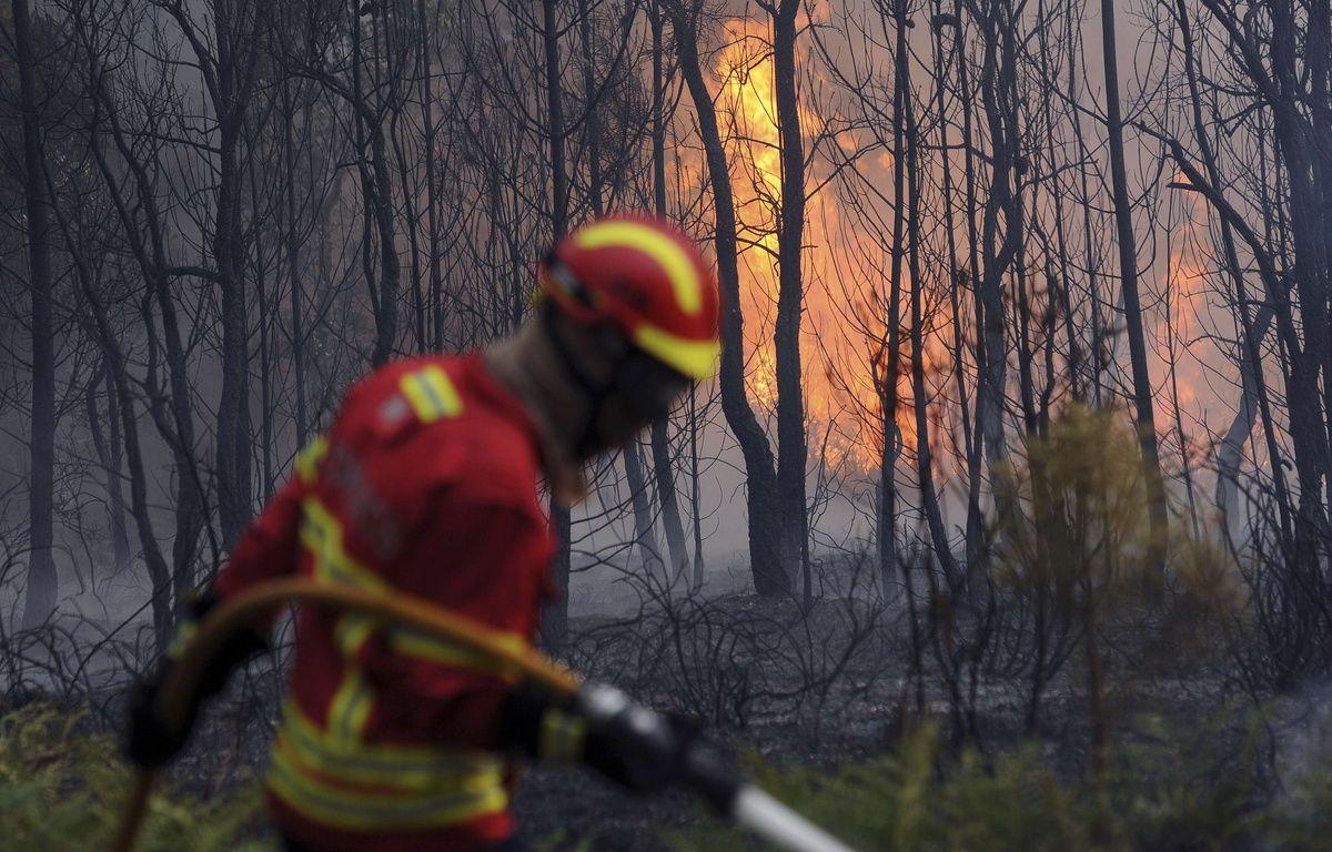600 pompiers ont été mobilisés pour affronter les flammes – Paulo Duarte