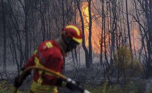 600 pompiers ont été mobilisés pour affronter les flammes