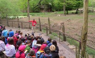 Comment s'occuper pendant les vacances scolaires (Illustration au parc animalier de Sainte-Croix)