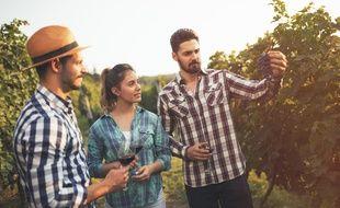 Un GPV dépendra beaucoup de la relation que vous établirez avec le viticulteur.