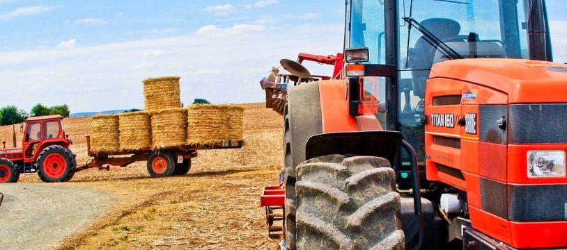 Agriculture - Illustration.