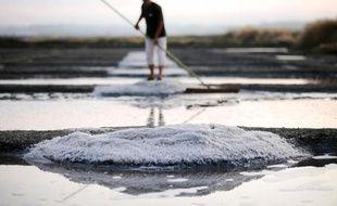 Un homme travaille dans un marais salant, le 24 juin à Guérande, dans l'ouest de la France