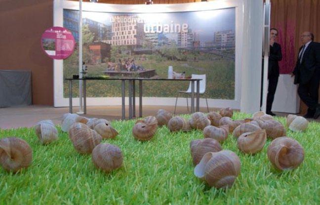 Une exposition sur la biodiversité se tient dans les jardins du Trocadéro à Paris