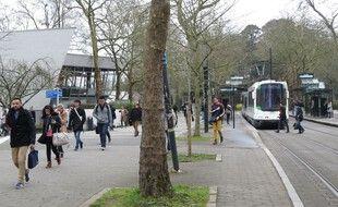 A Nantes, le 24/03/2015- Illustration etudiants a l universite, campus du Tertre, devant la fac de lettres