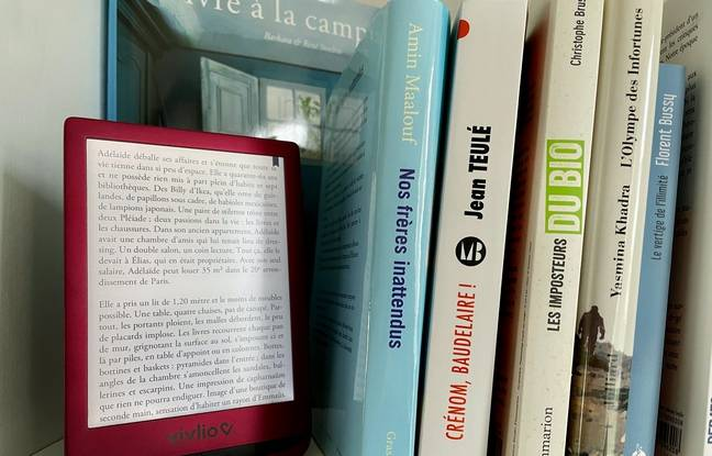 Le livre numérique, complémentaire du livre papier.