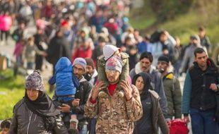 Des migrants et réfugiés marchent vers la frontière entre l'Autriche et la Slovénie, le 25 octobre 2015 à Sentilj, en Slovénie