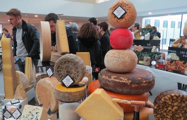 Du fromage à tous les niveaux