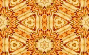 Une mosaïque de pâtes faite par quelqu'un au sens artistique développé