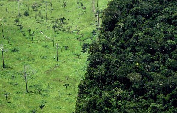 Déforestation de la forêt amazonienne, au Brésil. – AZOURY RICARDO/F4/SIPA