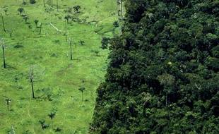 Déforestation de la forêt amazonienne, au Brésil.